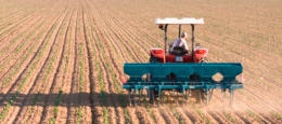 cosechadora en un monocultivo